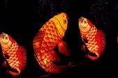 鯉魚燈:DSC_0524_調整大小.JPG