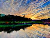 溪邊黃昏:IMG_20200107_170724_調整大小.jpg
