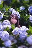 繡球花ˊ習拍:DSC_0746_調整大小.JPG
