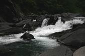 風景-松濤意境98-9-3:IMG_0076.JPG