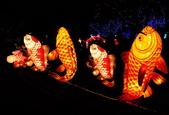 鯉魚燈:DSC_0525_調整大小.JPG