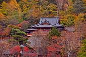 中禪寺湖 楓景:DSC_0355_調整大小.JPG