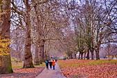 英國 白金漢宮 公園:DSC_0562_調整大小.JPG