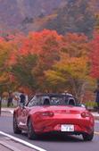 中禪寺湖 楓景:DSC_0401_調整大小.JPG