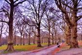 英國 白金漢宮 公園:DSC_0101_調整大小.JPG