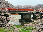 弘前公園 櫻花祭 花見:1A8554F9-35AD-4AB2-855B-EFB5D8FE18C1_調整大小.jpg