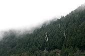 太平山11-5-98:IMG_0526.JPG