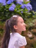 繡球花ˊ習拍:DSC_0263_調整大小.JPG
