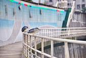 內湖 櫻花 2020:DSC_0858_調整大小.JPG