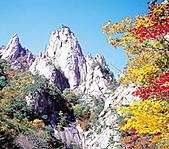 風景:推薦網頁~韓國觀光公社~ 3 (雪嶽山國立公園).jpg