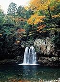 風景:日本廣島紅葉繽紛~看世界上最大的杓子!8.jpg