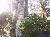 峻毅畢業旅行的照片:DSC-0000071.jpg