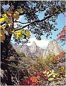 風景:韓國江原道雪嶽山國立公園外雪嶽2.jpg