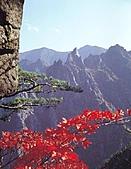 風景:韓國江原道雪嶽山國立公園外雪嶽3.jpg