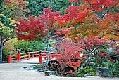 風景:日本廣島紅葉繽紛~看世界上最大的杓子!1.jpg