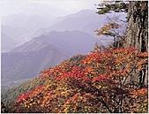 風景:韓國江原道雪嶽山國立公園外雪嶽5.jpg