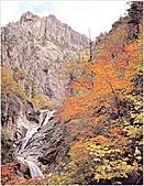 風景:韓國江原道雪嶽山國立公園外雪嶽12 - 複製.jpg