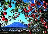 風景:日本青森蘋果除了吃還能泡!紅葉溫泉、秋季旬味推薦 2.jpg