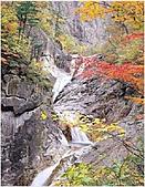 風景:韓國江原道雪嶽山國立公園外雪嶽13 - 複製.jpg