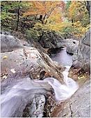 風景:韓國江原道雪嶽山國立公園外雪嶽14 - 複製.jpg