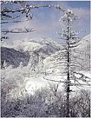 風景:韓國江原道雪嶽山國立公園外雪嶽16 - 複製.jpg