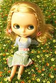 Blythe女兒 小布生活趣事:草地上 好好玩唷