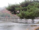 京都賞楓五日遊:嵐山、天龍寺、二尊院:aaa 314.jpg