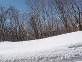 處處有驚喜追櫻踏雪之行(四)--十和田湖、奧入瀨溪:P4207089.JPG