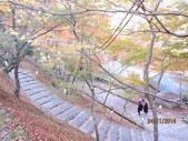 京都賞楓五日遊之二:高雄神護寺、高山寺:aaa 080.jpg