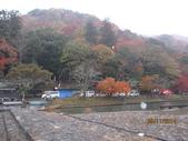 京都賞楓五日遊:嵐山、天龍寺、二尊院:aaa 301.jpg
