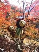 京都賞楓五日遊之二:高雄神護寺、高山寺:IMG_5280.JPG