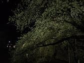 處處有驚喜追櫻踏雪之行(六)--山形縣霞城公園:P4217527.JPG
