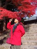 京都賞楓五日遊之二:高雄神護寺、高山寺:PB249421.JPG