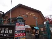 京都賞楓五日遊:嵐山、天龍寺、二尊院:PB259546.JPG