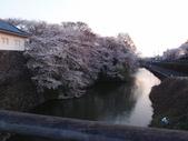 處處有驚喜追櫻踏雪之行(六)--山形縣霞城公園:P4227552.JPG