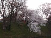 處處有驚喜追櫻踏雪之行(六)--山形縣霞城公園:P4227702.JPG