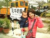 102/3/2台南乳牛的家:台南柳營