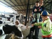 102/3/2台南乳牛的家:幼幼看熱鬧