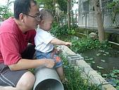 屏東萬丹~中元世紀牧場:P1030518.JPG