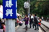 勝興車站、銅鑼杭菊:苗栗杭菊&勝興車站 104上傳.JPG