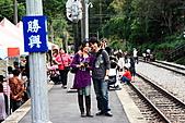 勝興車站、銅鑼杭菊:苗栗杭菊&勝興車站 105上傳.JPG