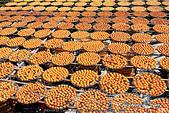新埔~柿餅節:DPP_11668.jpg