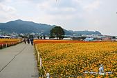 2014_新社花海節 :DPP_14414.jpg