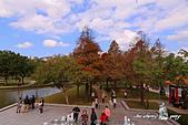 大湖公園:DPP_14958.jpg
