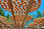 新埔~柿餅節:DPP_11657.jpg
