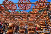 新埔~柿餅節:DPP_11672.jpg