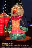 2013 台灣颩燈會在新竹:DPP_10493.jpg