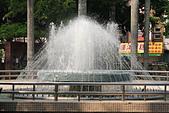 嘉義公園:IMG_3038.JPG