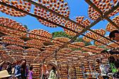 新埔~柿餅節:DPP_11659.jpg