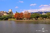大湖公園:DPP_14946.jpg